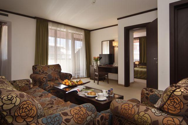 Астера Банско Хотел & СПА - едноспален апартамент